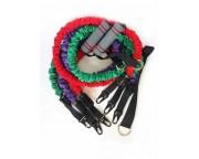 Набор эспандеров (3 эспандера в защитном кожухе, якорь, ручки, чехол)